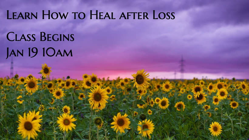 Learn How to Heal After Loss