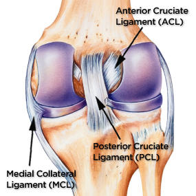 PCL Injury and Reconstruction