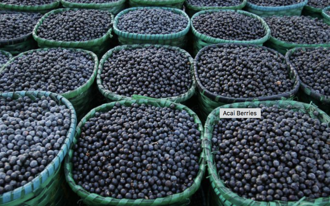 5 Impressive Health Benefits of Acai Berries